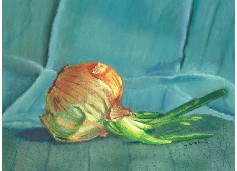 """© Laura Gabel. """"Turquoise Onion"""". Soft Pastel, white frame, 11 x 14. Private collection."""