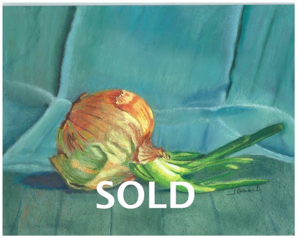 """© Laura Gabel. """"Turquoise Onion"""". Soft Pastel on Pastelbord, white frame, 17 x 14. Private collection."""