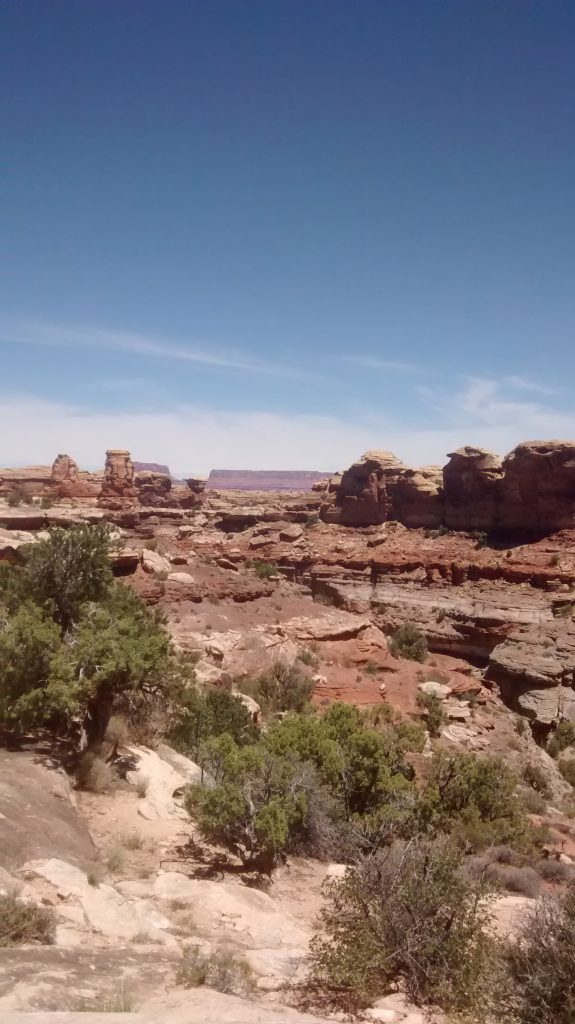 barren and beautiful canyonlands