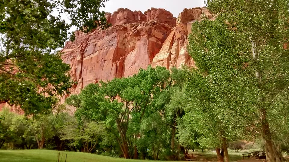 barren and beautiful capitol reef 4