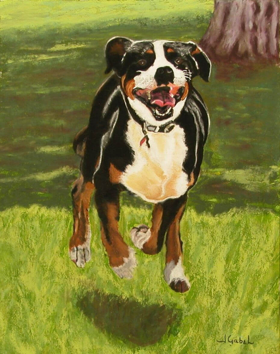 """© Laura Gabel, """"Doc"""". Pastel, 11x14. Private collection."""
