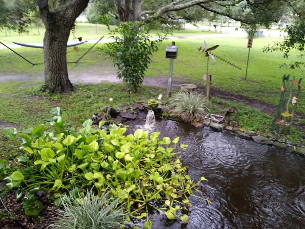 blessings blog dayton pond