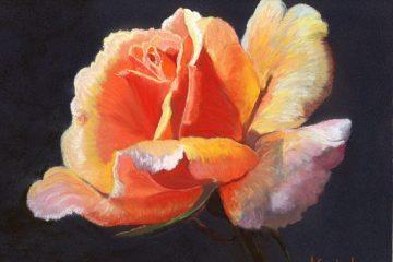 "© Laura Gabel, ""Lesla's Rose"". Pastel, 8x10. Private collection."