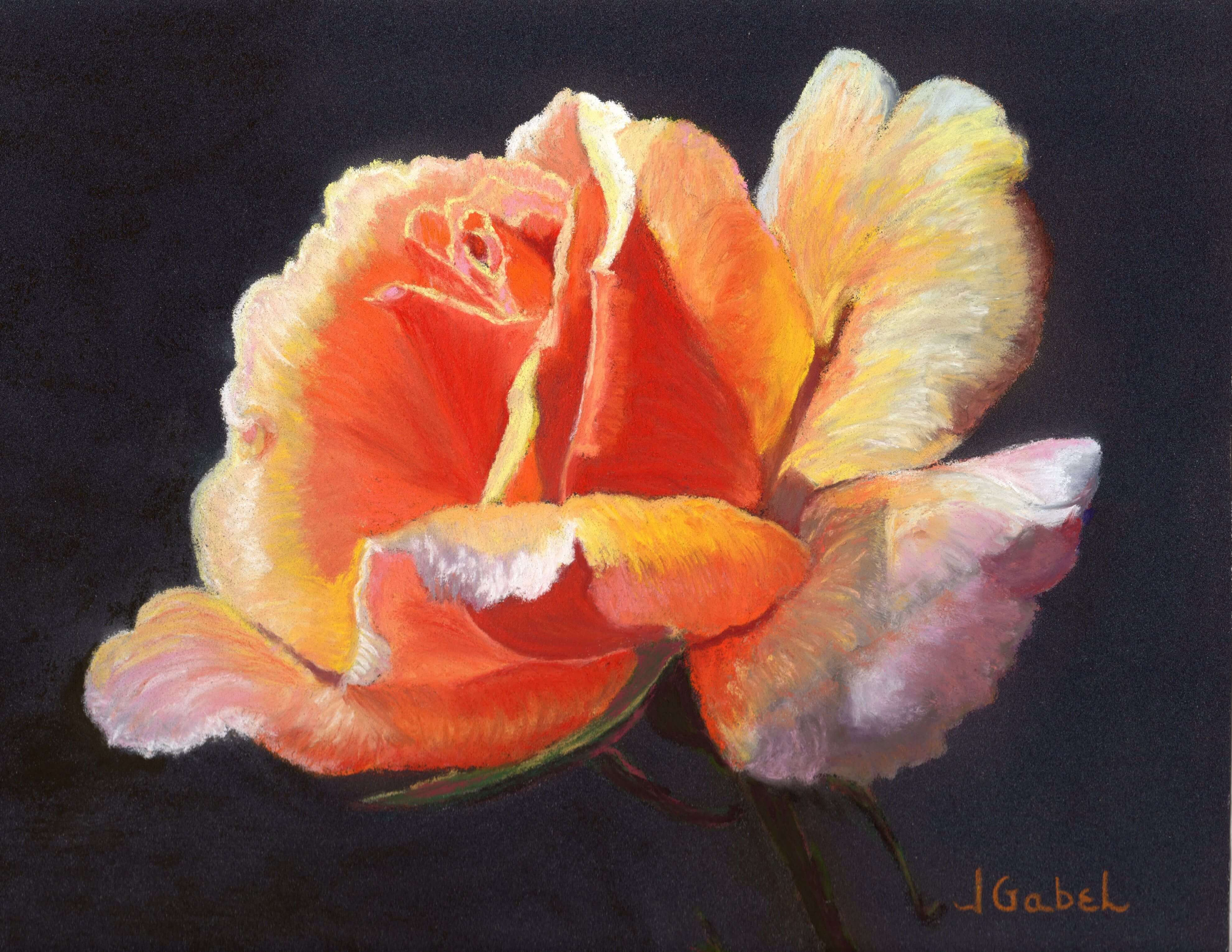 Leslas Rose