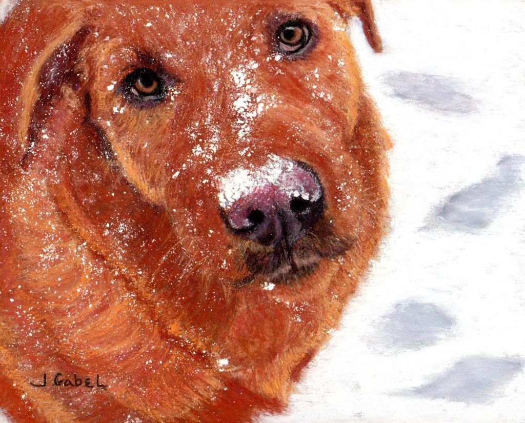 "© Laura Gabel, ""Snow Dog"". Pastel with Brown mat and frame, 13 1/4 x 16 1/4. $495.00"