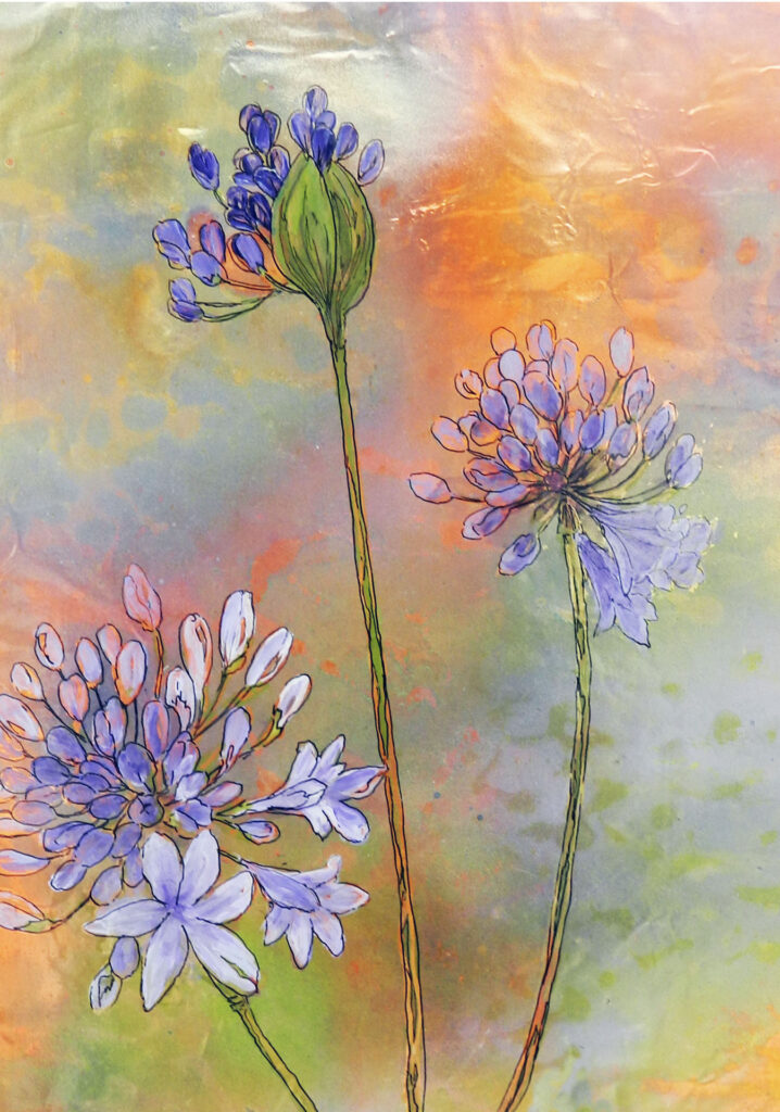 agapanthus purple  12 x 16 inches $175.00 by Lyn Novak Hise