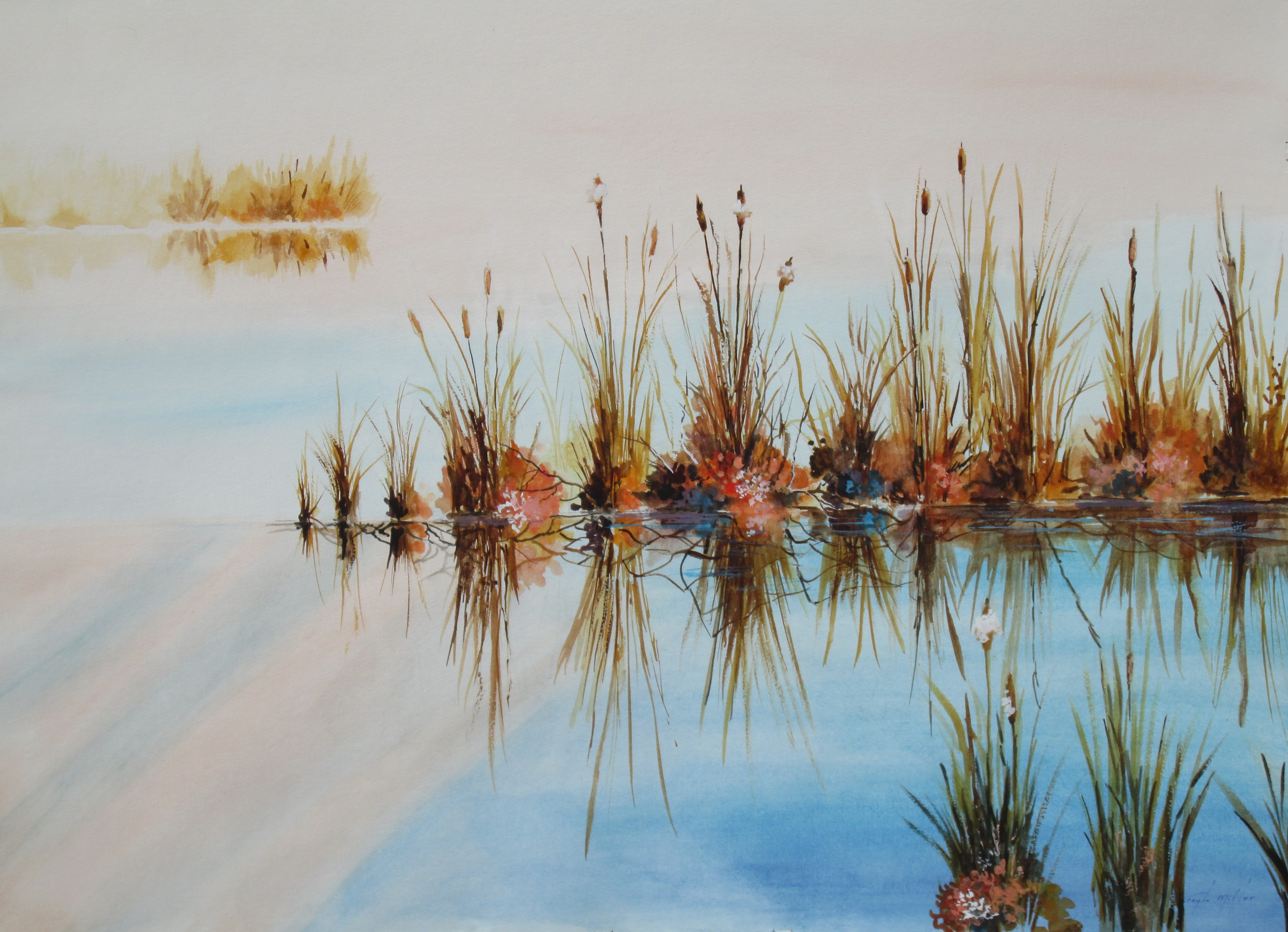 Cattails on the Pond size 30x22.5  Framed size 39x31, watercolor. $425.00